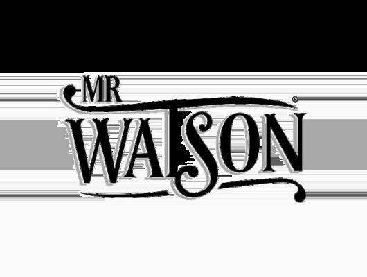 agency-mrwatson